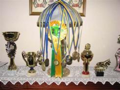 80004501_2_644x461_kobel-maltiyskaya-bolonka-bebi-feys-predlagaetsya-na-vyazku-fotografii